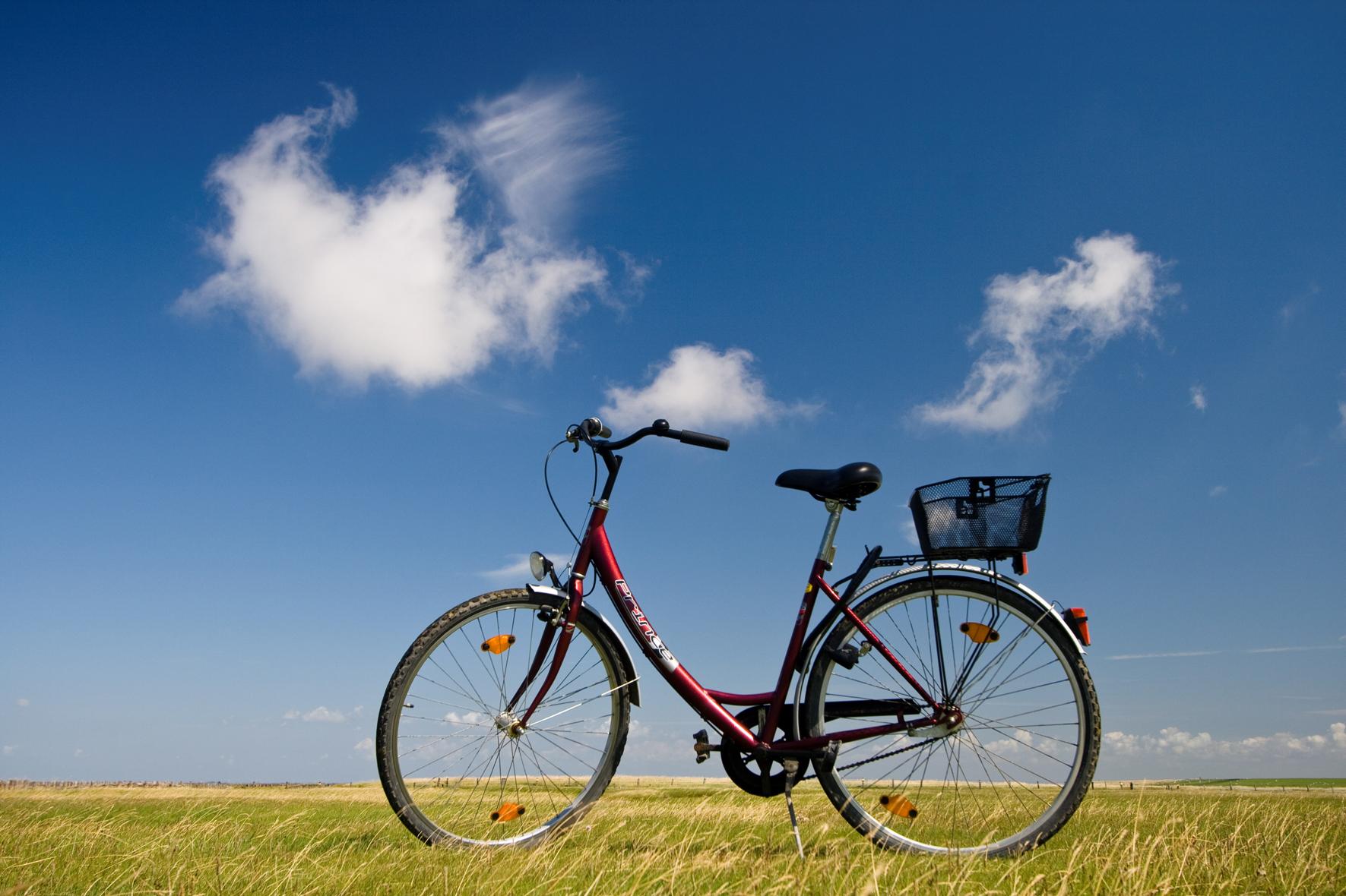 Fahrrad - Martin Stock/LKN.SH